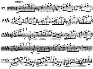 ドッツァウアー113 の練習曲から No.37